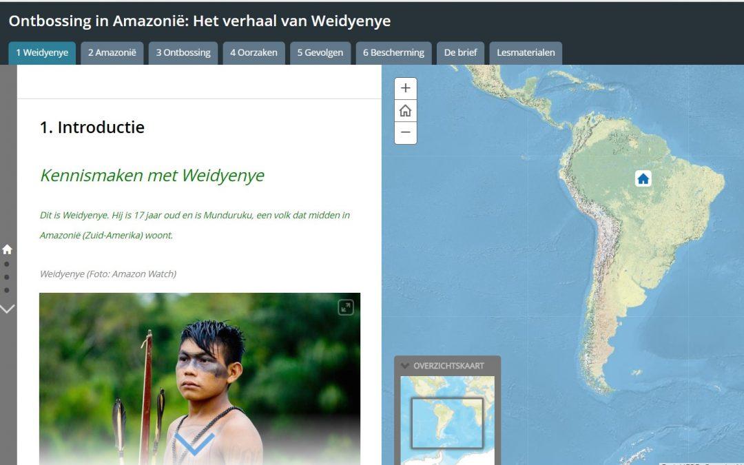 Ontbossing in Amazonië: Het verhaal van Weidyenye